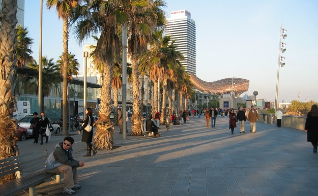barceloneta-view-of-beautiful-palm-trees-and-boardwalk-beach-district-barcelona